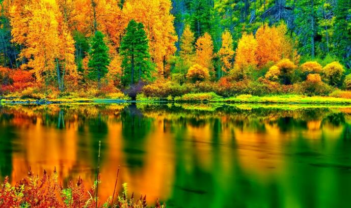 描写秋天唯美景色的句子160条