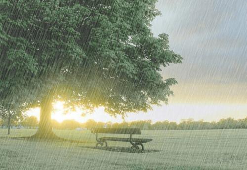 雨天正能量的句子_雨天发朋友圈的句子